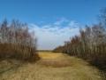 NP het Lauwersmeer