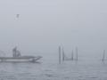 Reitdiep in de mist