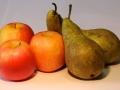Appels met peren vergelijken - Willem